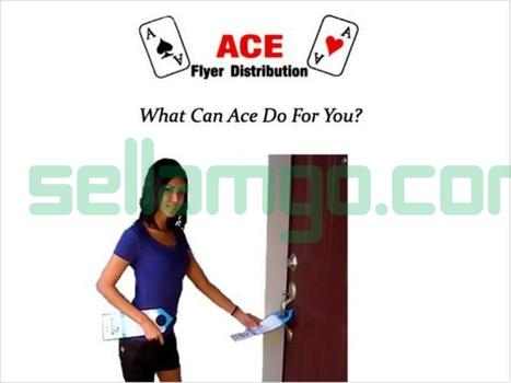 Ace Flyer Distribution over 36 Years in ...