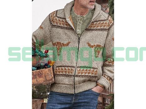 Lapel Standard Slim Mens Sweater